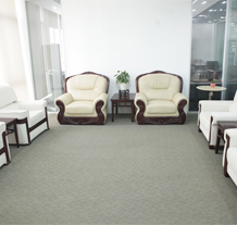 武汉传神信息技术有限公司工程案例(贵宾接待室)