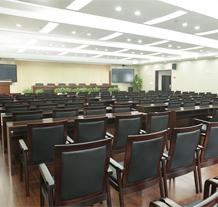 武汉卫生局会议室和报告厅工程案例