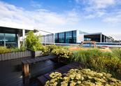 分享|这组作品 教你玩转屋顶花园设计